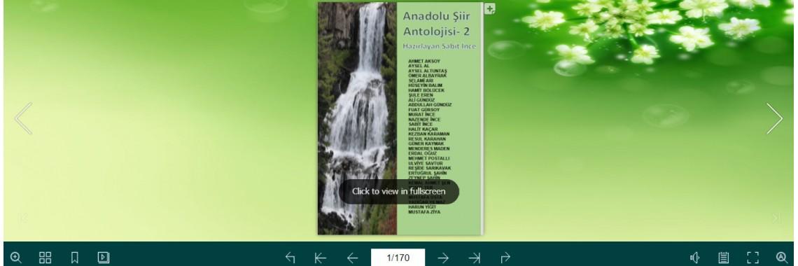 Anadolu Şiir Anatolojisi 2